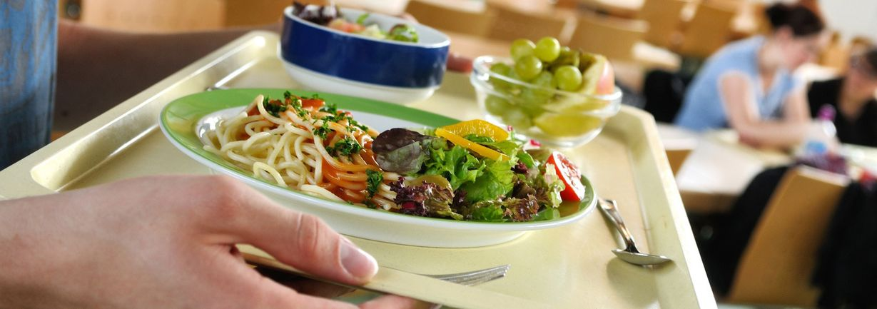 area-salud-soles-gastronomia