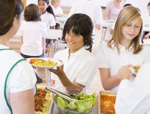 servicio de catering escolar